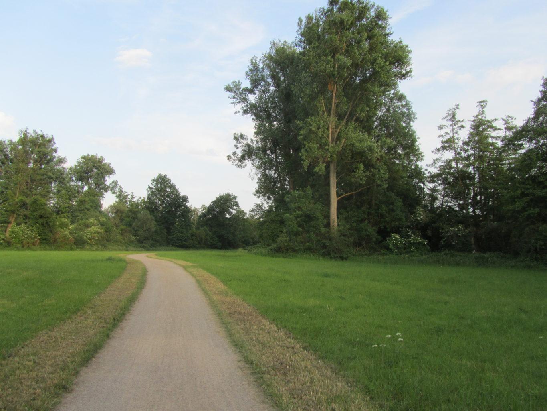 Landschaft am Ruruferradweg hinter Heckers Weiher
