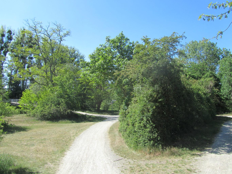 Rurufer-Radweg an der Kuhbrücke