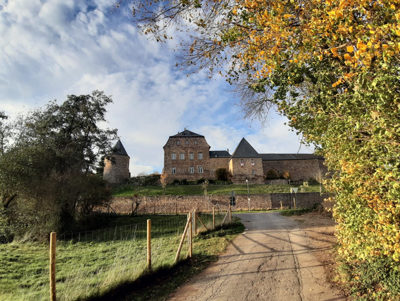 Burg Untermaubach vom Feld gesehen